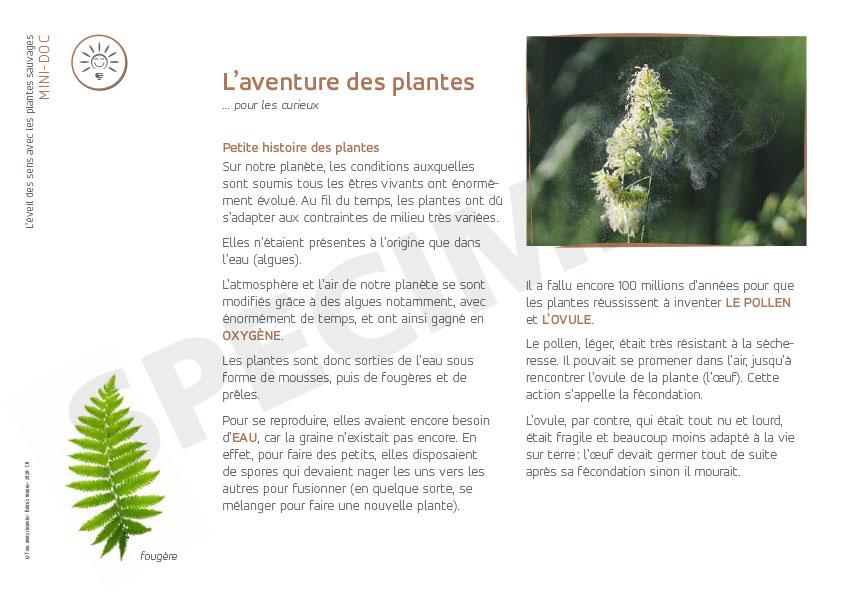 galerie mai aventure des plantes