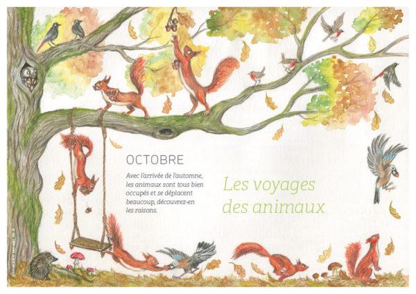 page de couverture d'octobre: à la découverte des voyages des animaux